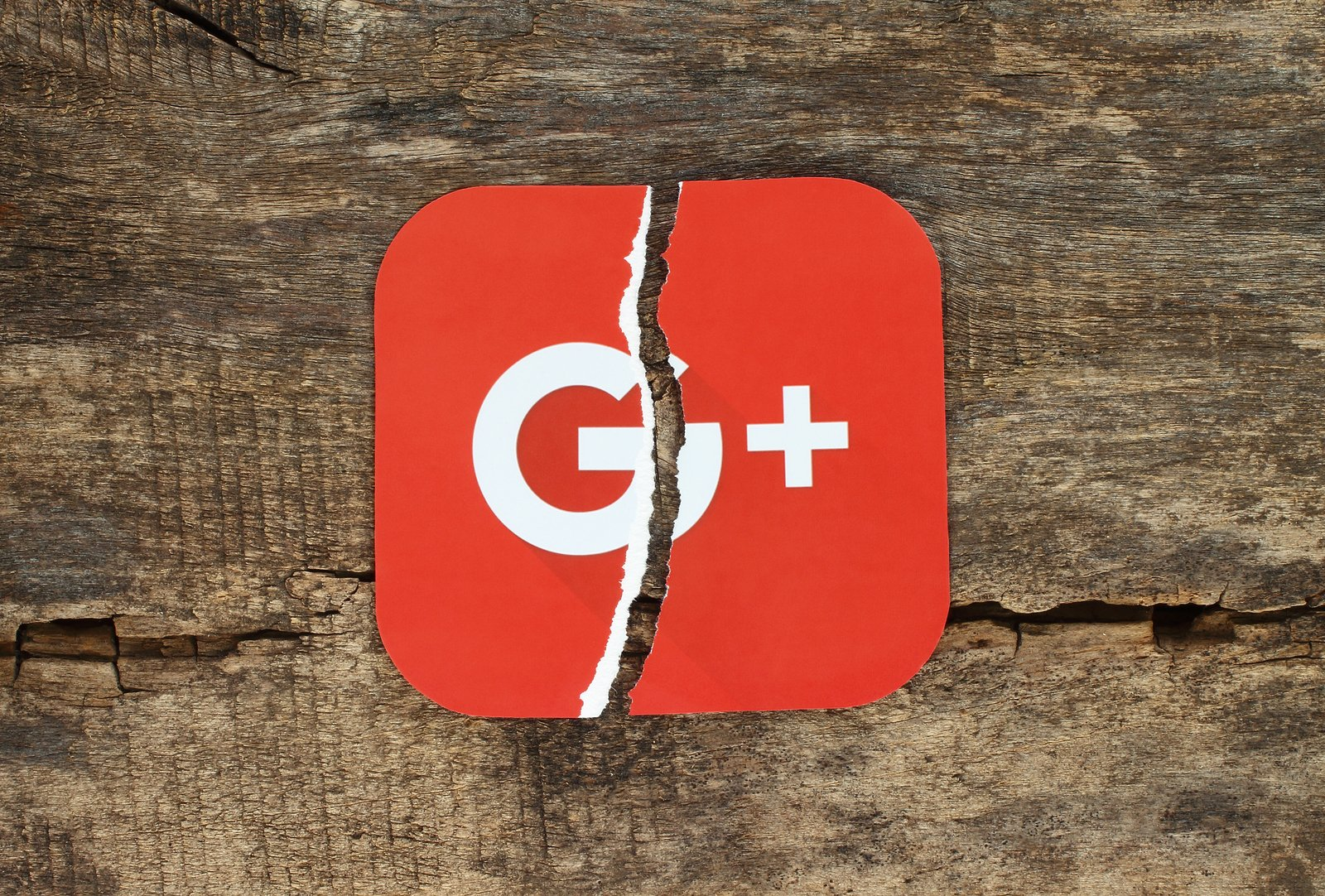 The Rise And Demise Of Google+